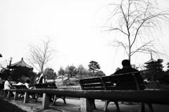 興福寺南円堂と五重塔