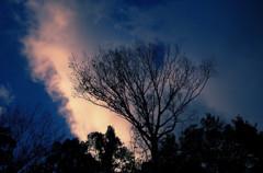 斑鳩の里の夕暮れ