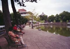 定点観測・猿沢池
