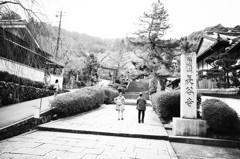 奈良 長谷寺 春⑨