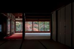 京都紅葉狩り【南禅寺:天授庵】①20201123