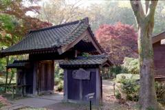 薬師池公園【旧荻野家周辺の紅葉】①20201115銀塩
