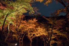 京都紅葉狩り【清水寺:紅葉】②20201122