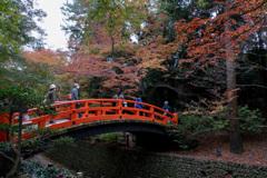 京都紅葉狩り【北野天満宮:紅葉】①20201122