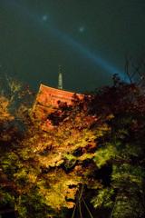 京都紅葉狩り【清水寺:紅葉】①20201122