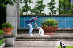 ヒトと犬の / 私的スケッチ
