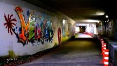 写真指編:アートトンネル:NTW291
