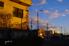 写真句:夕色の街