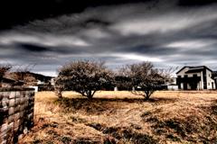 写真エッセイ:荒涼たる春