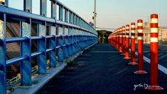 写真エッセイ:海に行く道:NTW288