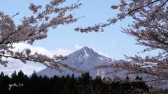 補遺:観音寺参道からみた磐梯山