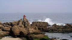 写真エッセイ:久しぶりに海に行った