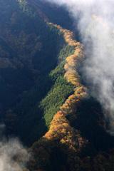ナメゴ谷の龍 2