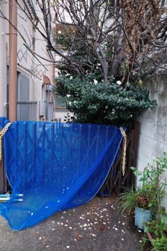 街角の青い布
