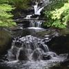 君津 濃溝の滝2