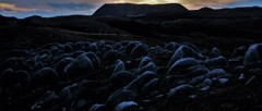 平尾台の夕