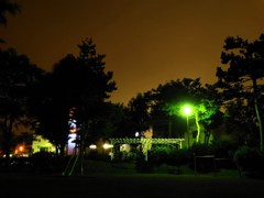 公園の夜景