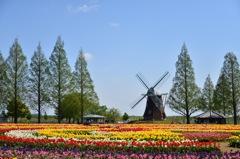 あけぼの農林公園
