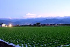 群馬県昭和村①