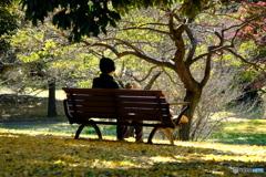 昭和記念公園III