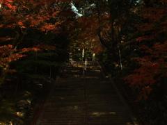 神聖な階段