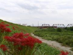 鉄路の風景
