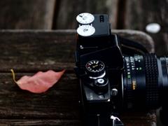 カメラと休日