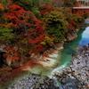 吾妻渓谷の紅葉