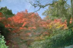 亜空間の紅葉