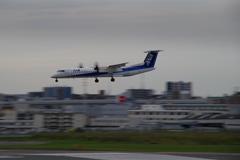 ANAウイングス(JA464A)ボンバルディア DHC-8-402Q-8