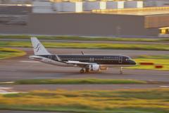 スターフライヤー(JA24MC)A320-214@羽田