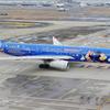 中国東方航空[上海ディズニー](B-6507)A330-343X@羽田