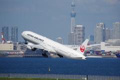 JAL(JA736J)777-346ER@羽田