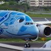 ANA[FLYING HONU](JA381A)A380-841@成田_03