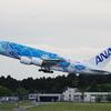 ANA[FLYING HONU](JA381A)A380-841@成田_06