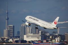 JAL(JA846J)787-8@羽田