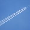 NCA(JA12KZ)747-8@セントレア上空