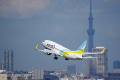 AIRDO(JA08AN)737-781@羽田