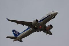 ANA(JA214A)A320-271N@羽田_1