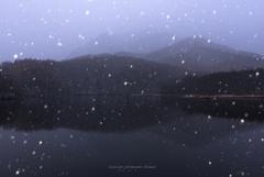 雪降る未明の鏡池