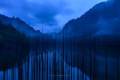 小雨降る未明の自然湖