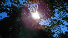 太陽に覗かれて