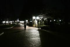 夜にひとり