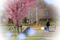 春の陽に・・・