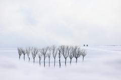 雪国の冬は…