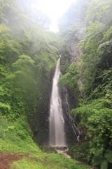 新緑雨の善根滝