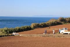 残したい風景-早崎半島