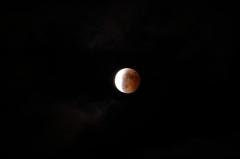 平成26年10月8日 皆既月食 4