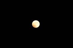 平成26年10月8日 皆既月食 1
