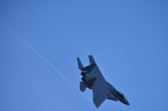 平成30年 岐阜基地航空祭 イーグル 01